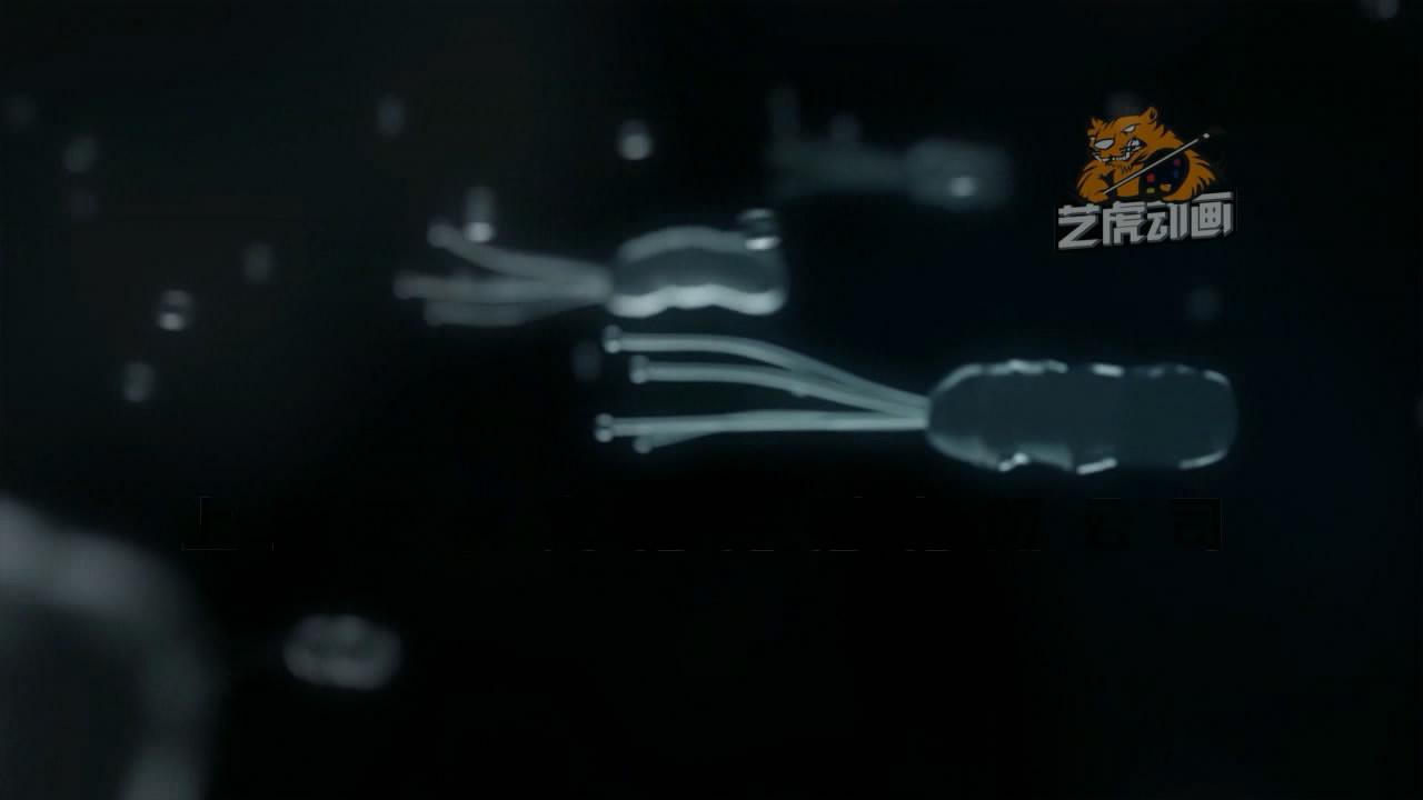 三维医学动画制作